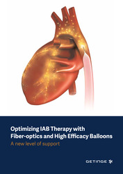 Optimizing IAB Therapy with Fiber-optics and High Efficiency Balloons Presentation