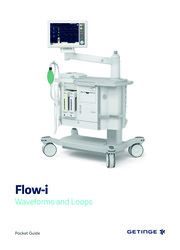 Flow-i Wave Forms and Loops